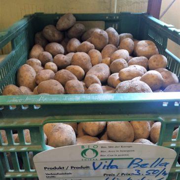 Kartoffeln sind geerntet